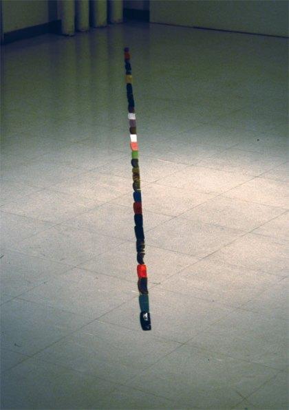 Polku/Path, löydetyt hiuskammat/found hair combs, 2004