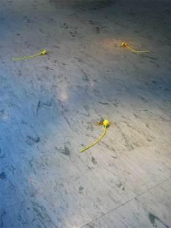Kullerot/Globeflowers, balloon holders made into flowers