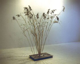 Ikebana, mdf poster, stones, reed/mdf-levy kuvalla, kivet ja kaisla, 2004