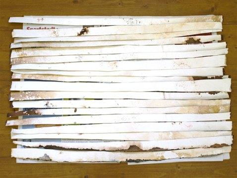 Maisema/Landscape, paperi, sanomalehti, guassi/paper, newspaper, guasche, 2008