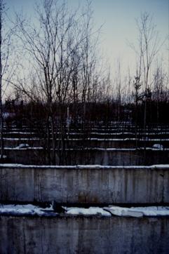 betonimaisema 2000