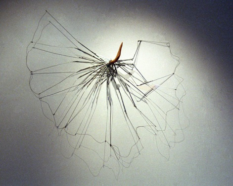 Ote/Grasp, sateenvarjo, rottinki/umbrella, rattan, 2006
