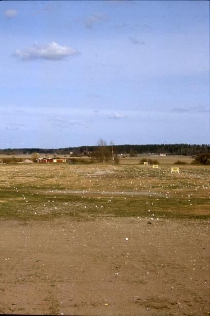 Tikkurila 2002