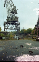 Kronstadt 2001 Damaged photos