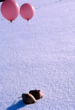 balloons and tits, 2000
