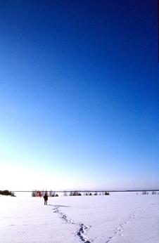 balloons on ice, 2000