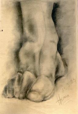 1995 tutkielma jalasta