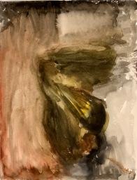Yökkönen, vesiväri, 2008