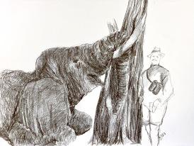 Sketching a hunt, 2021